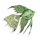 """Аппликация клеевая, принт, """"Рыба"""", цвет зеленый"""